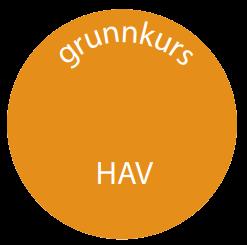 Grunnkurs Hav